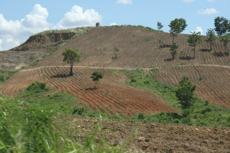 Many examples of 'poor' land management, leading to questions concerning 'why' farmers do what they do.
